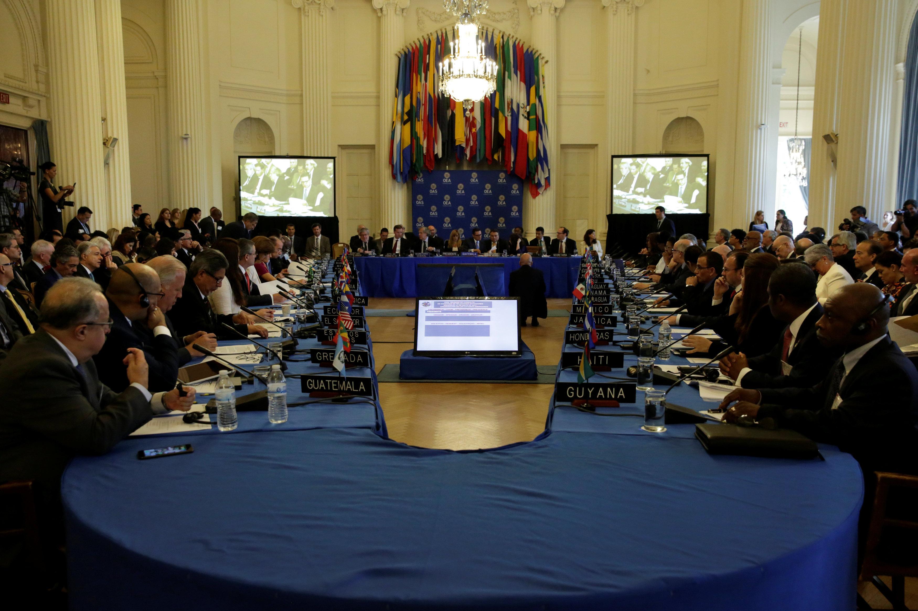 Organisation des États américains (OEA)