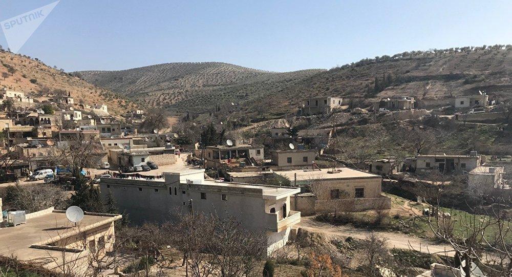 Les forces prorégime entrent dans l'enclave kurde d'Afrin — Syrie