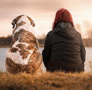Les chercheurs conseillent le «chien-parler» pour mieux s'entendre avec votre animal