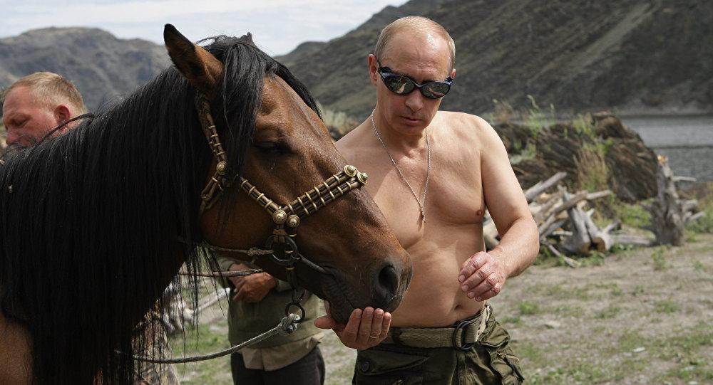 Vladimir Poutine pendant une randonnée équestre à torse nu