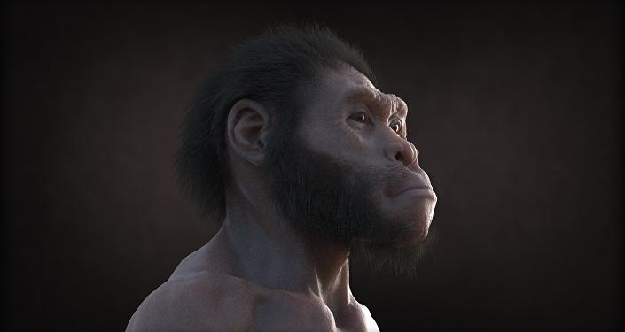 Extrait du film d'animation Homo naledi: Rencontre entre deux mondes