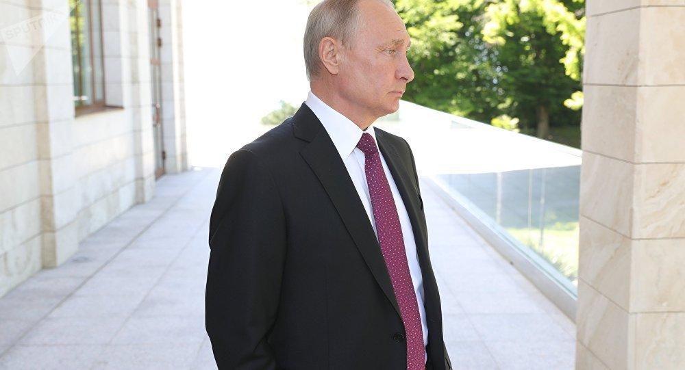 Vladimir Poutine à Sotchi