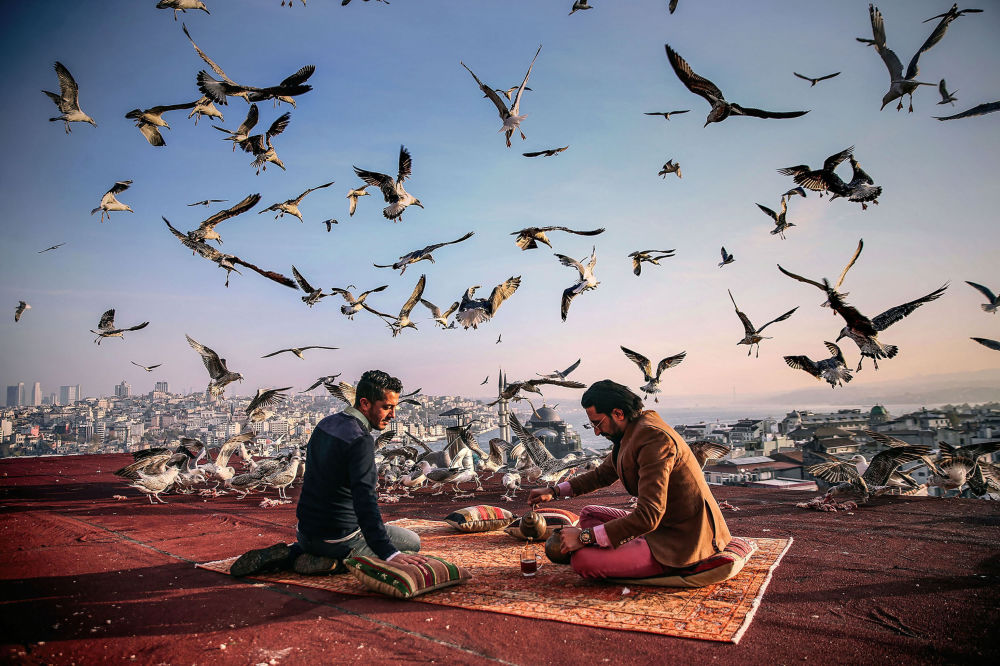 Les finalistes du concours de photojournalisme Andreï Sténine