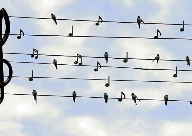 Musique sur Twitter