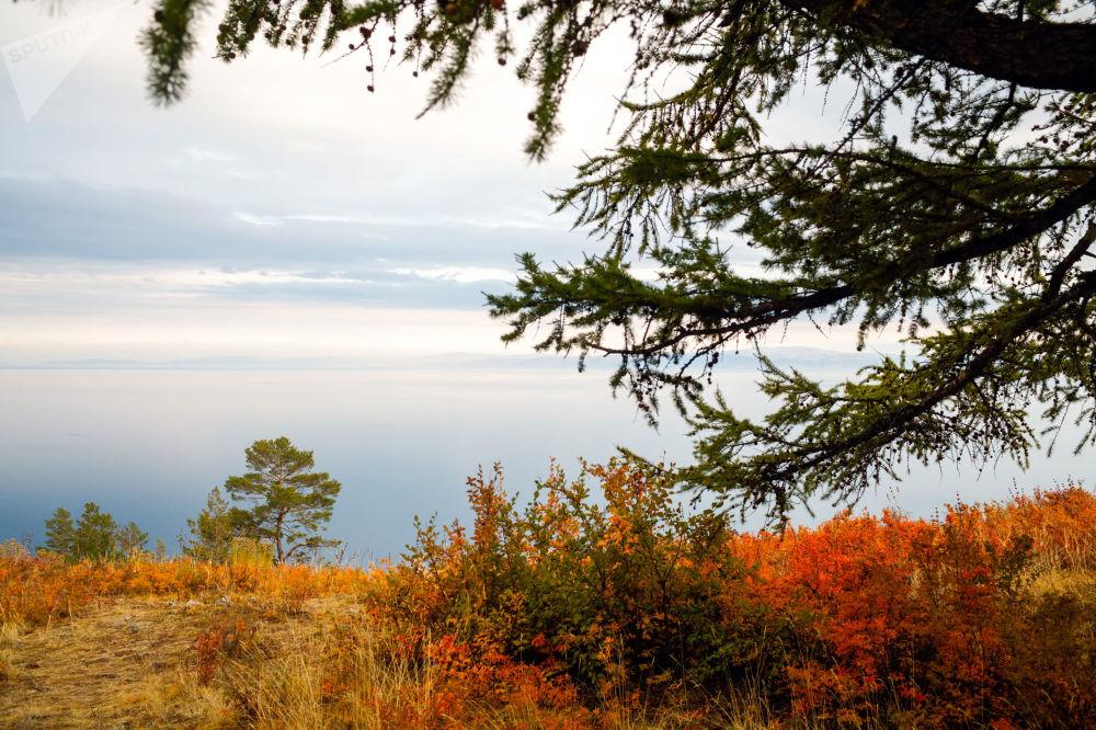 Les saisons du Baïkal