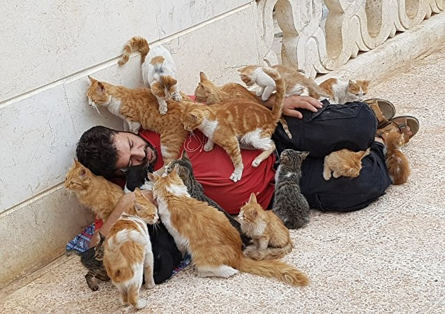 Mohammed Alaa al-Jalil avec ses chats