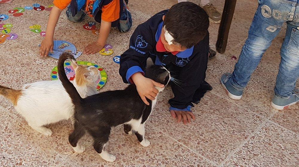 Un enfant avec les chats de Mohammed Alaa al-Jalil