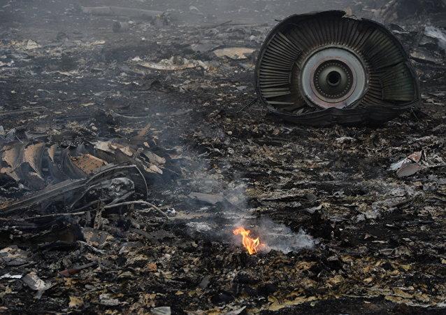 Le lieu du crash du Boeing malaisien dans le Donbass