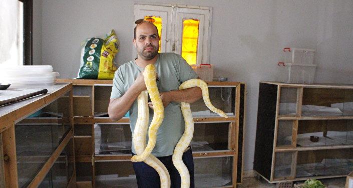 Mahmoud Talabah