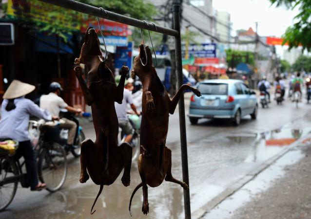 les habitudes alimentaires des pays asiatiques