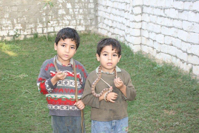 Dans le village, les enfants peuvent être vus en train de jouer avec des serpents comme s'il s'agissait de chats ou de chiens