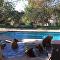 quatre ours dans une piscine