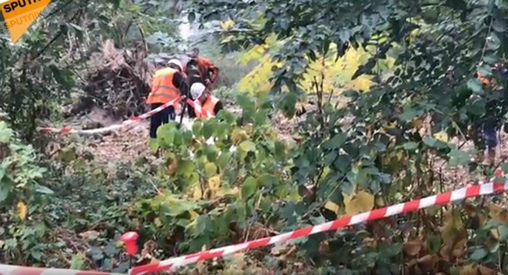 À 7 km de Paris, 29ha de «forêt à défendre» contre Valérie Pécresse
