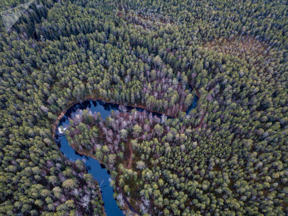 Le lac Onega au cœur de la taïga et d'un réseau d'une cinquantaine de rivières