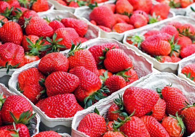 Des fraises. Image d'illustration