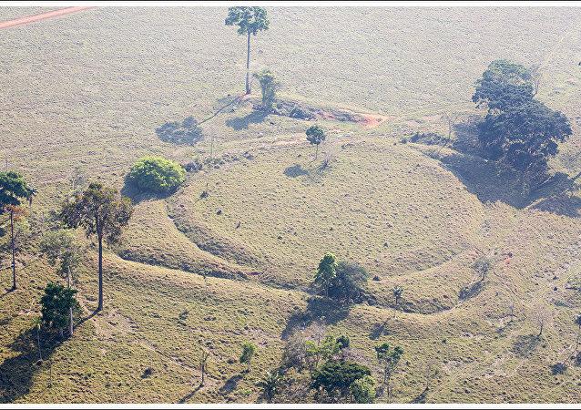 Le Brésil tient à préserver les mystérieux géoglyphes d'Amazonie