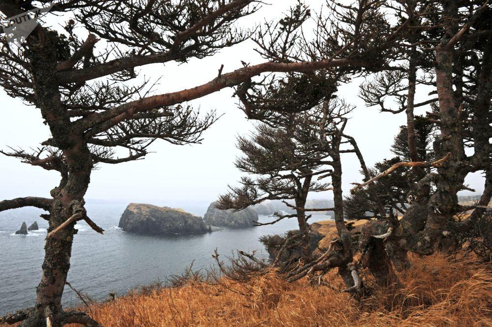 L'île de Shikotan: là où se réveille le soleil