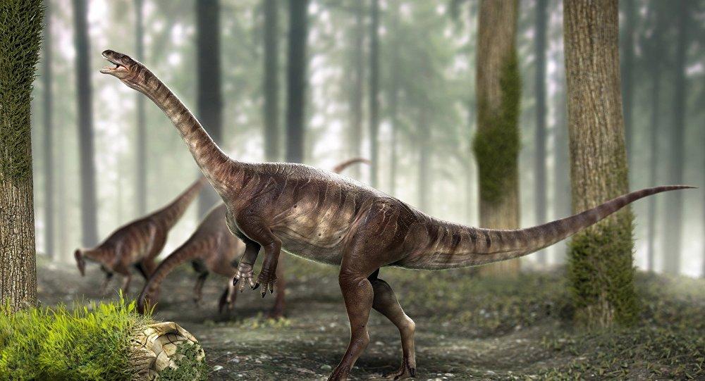Comment le plus ancien dinosaure à long cou connu à ce jour a-t-il été découvert?