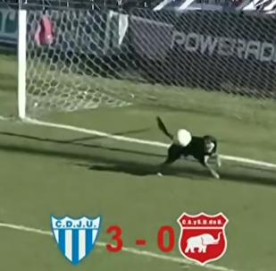 Au bon endroit au bon moment: ce chien fait irruption dans un match et défend les buts