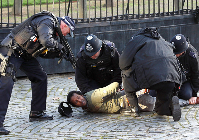 La police interpelle un homme dans l'enceinte du parlement à Londres