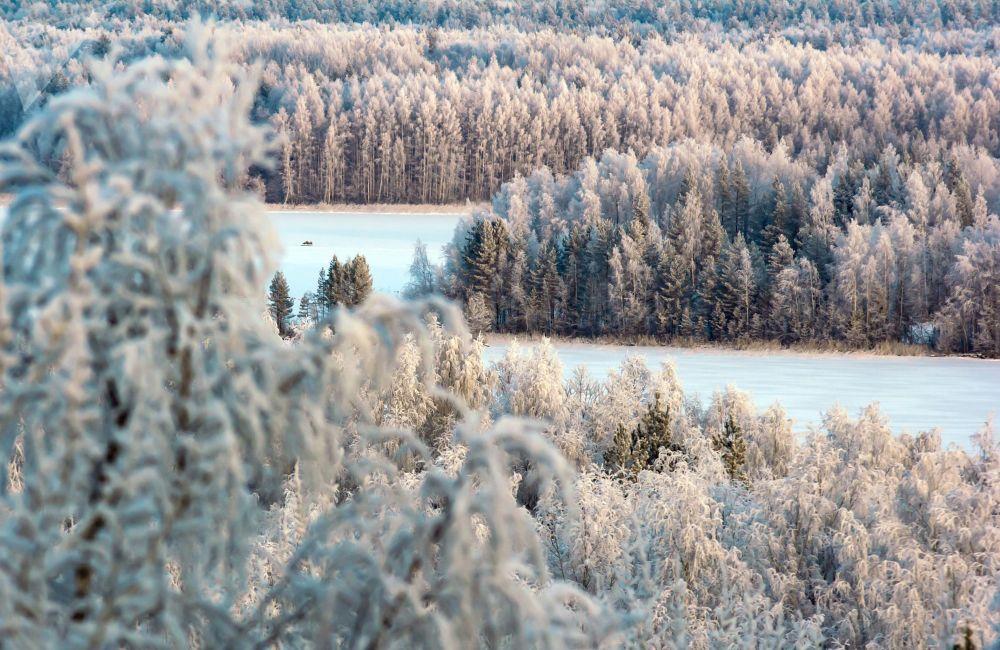 Le lac Kontchezero recouvert de neige et une forêt dans la région de Kondopoga en République de Carélie