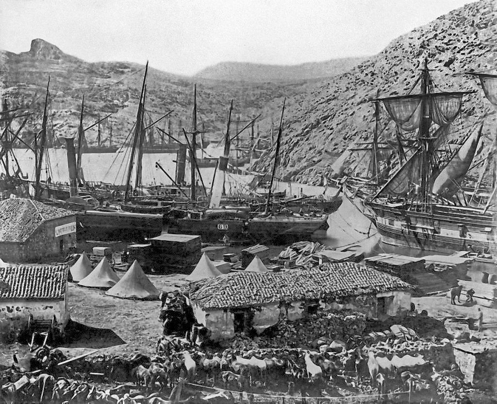 Baie de Cosaque, le port de Balaklava en 1855