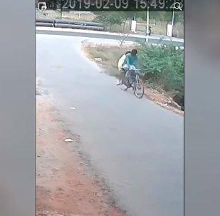 Un cobra agressif attaque des cyclistes