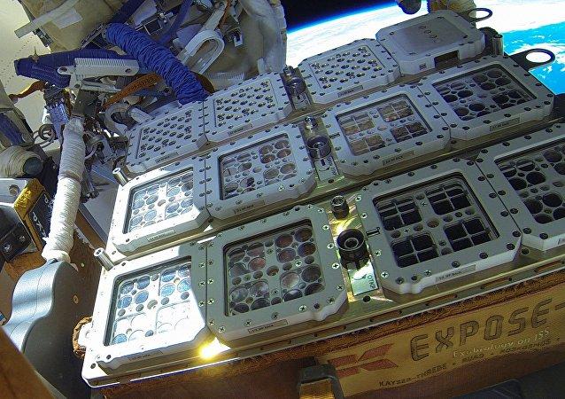 Certains organismes ont été placés à l'extérieur de l'ISS dans l'installation Expose-R2