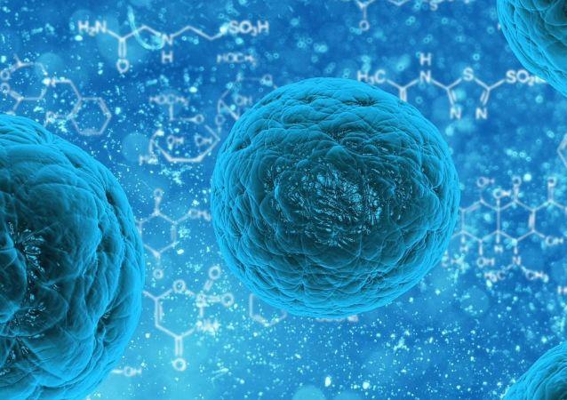 Une cellule (image d'illustration)
