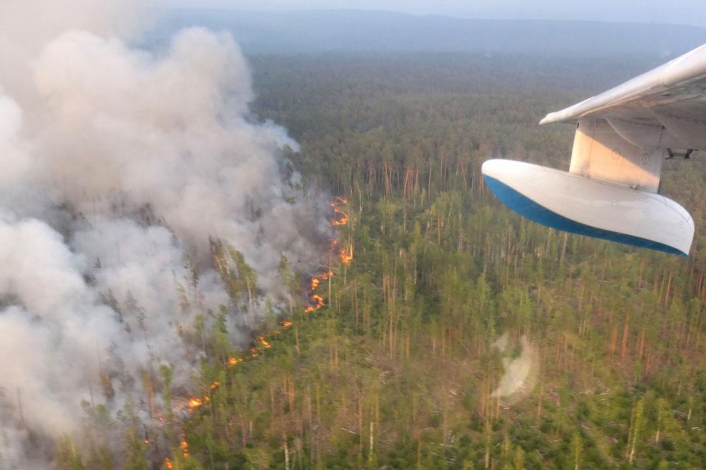 Feux de forêt près de Krasnoïarsk, en Sibérie