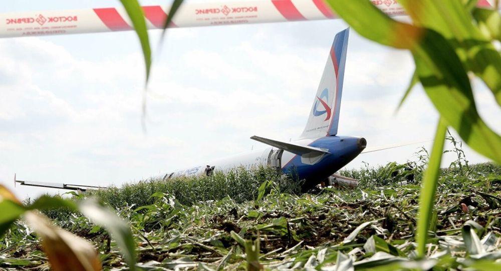Un Airbus atterrit d'urgence sur un champ de maïs en Russie (vidéo)