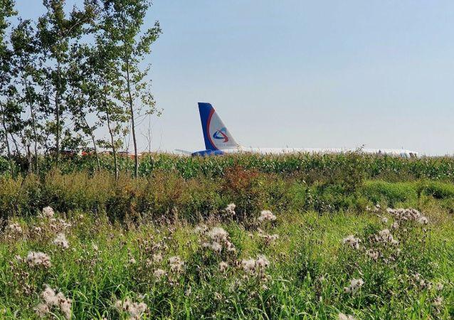 L'avion de ligne de la compagnie aérienne russe Ural Airlines