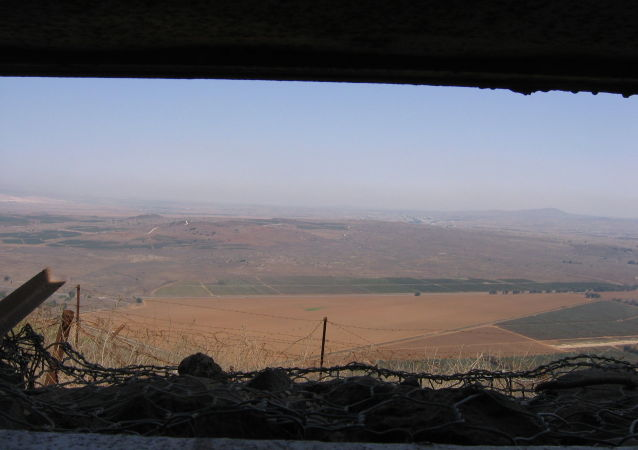 Plateau du Golan (archive photo)
