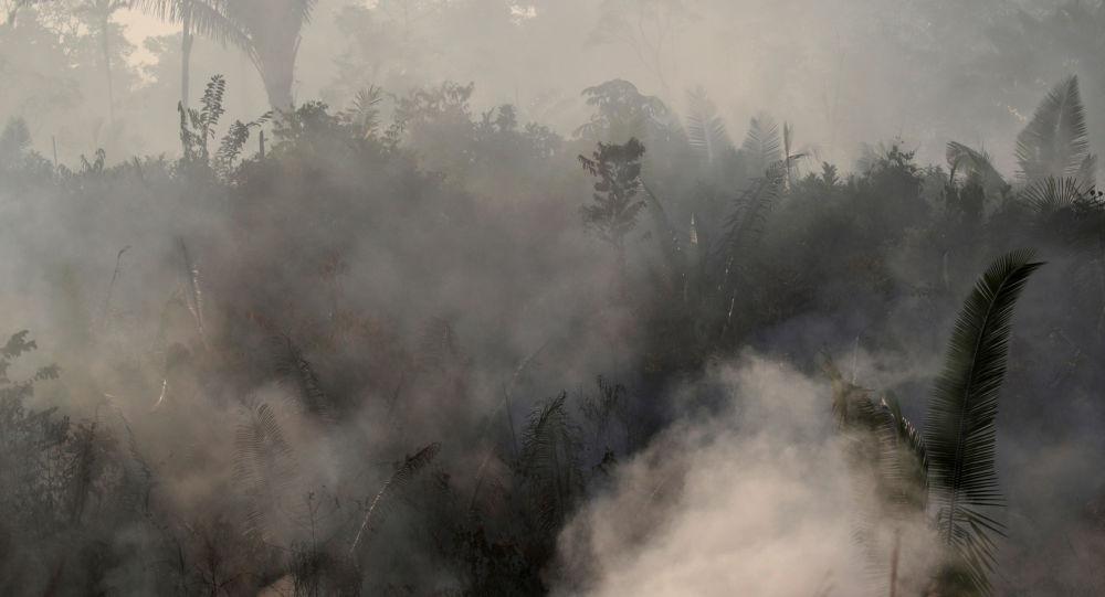 Les incendies en Amazonie