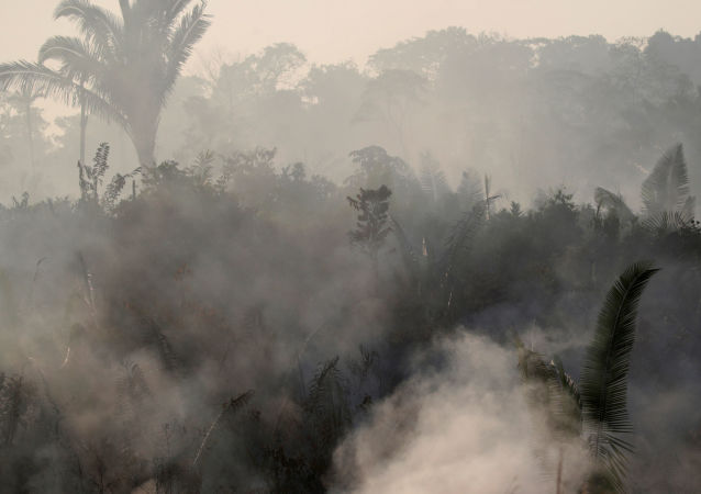 Les incendies en Amazonie