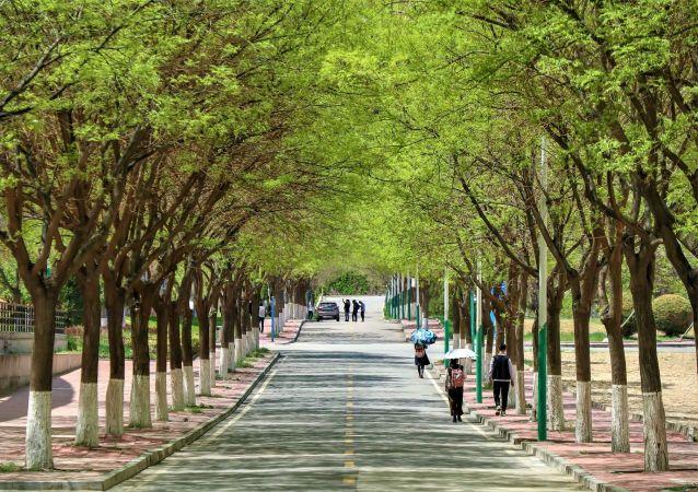 Les environs d'une école en Chine. Image d'illustration