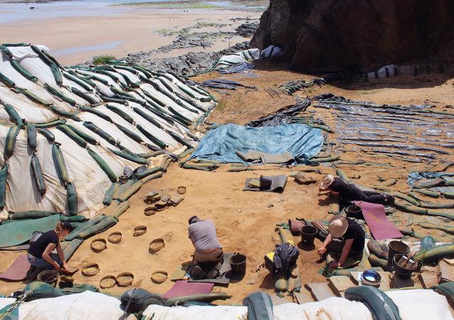 Découverte de centaines d'empreintes de pas de Néandertaliens sur une plage normande