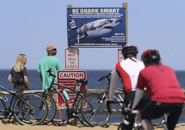 Un panneau de signalisation sur une plage du cap Cod avertissant contre la possible présence de requins dans les eaux
