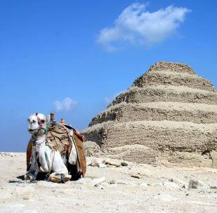 Le complexe funéraire de Djéser à Saqqarah