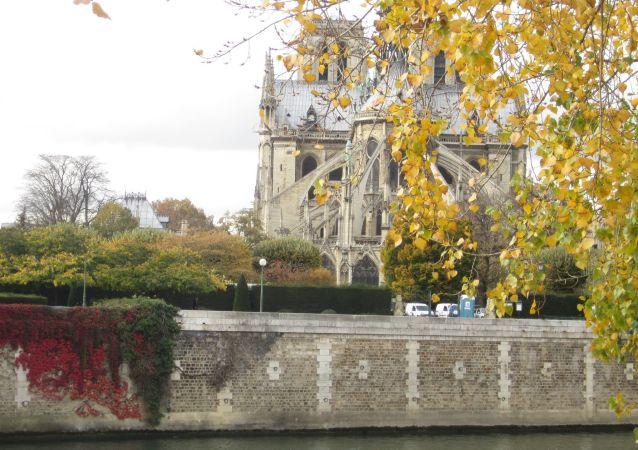 Notre-Dame de Paris, en 2011