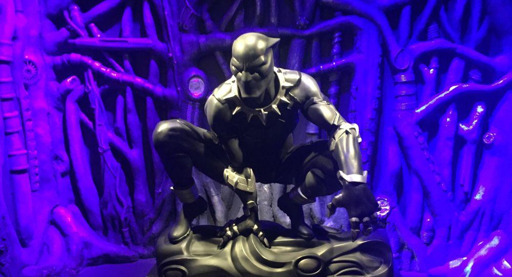 Black Panther (image d'illustration)