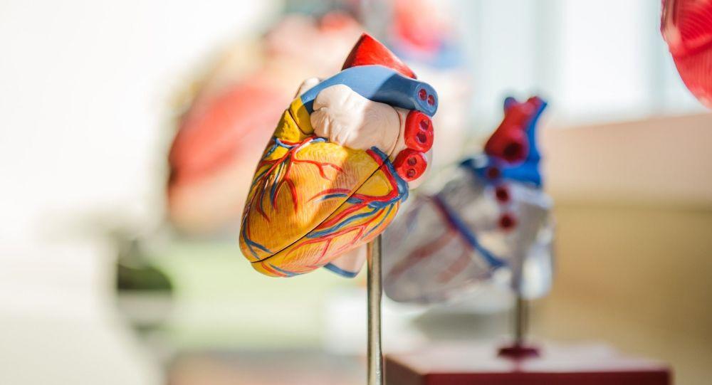 Un moyen facile de réduire l'hypertension sans médicament proposé par un cardiologue allemand