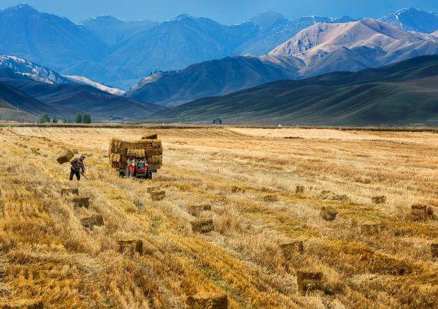 La région autonome du Xinjiang (archive photo)