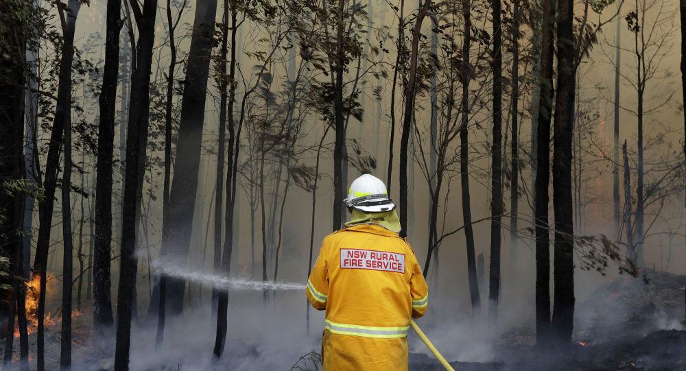Un avion bombardier d'eau s'écrase en Australie, trois morts