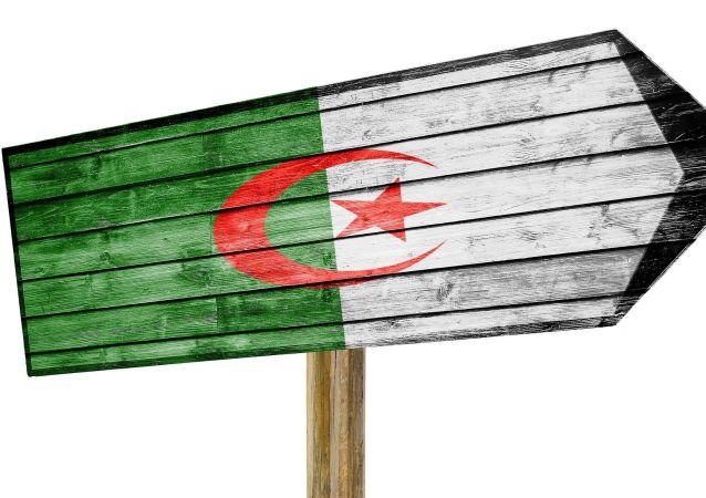 Panneau drapeau algérien