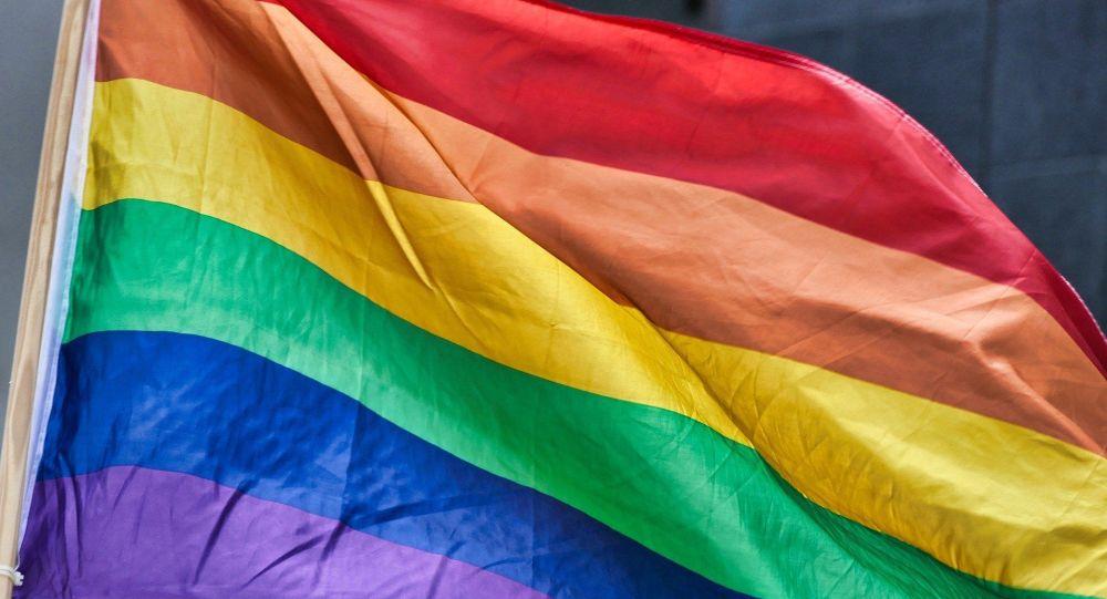 Une élue ex-LREM condamnée pour des injures homophobes