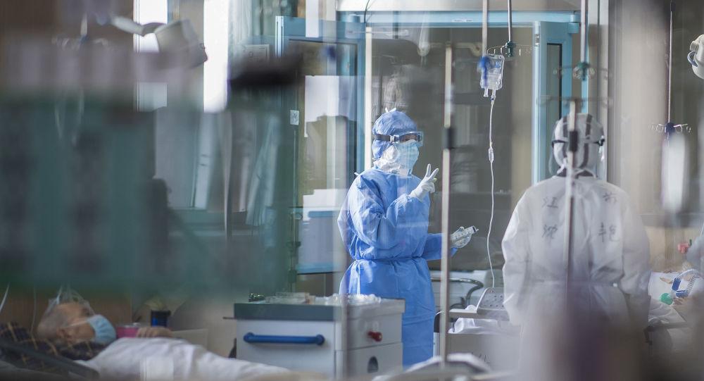 Les scientifiques chinois ont remonté la piste du coronavirus en Chine