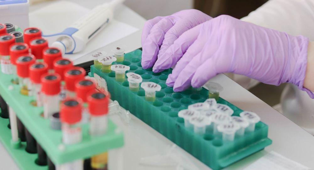 Pharmacopée africaine vs Covid-19: le Togo dresse une short-list de quatre traitements